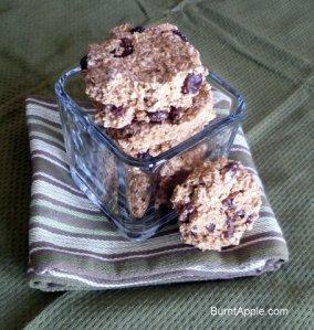 no bake, oatmeal raisin, cookie